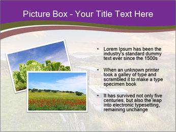 Beekeeping PowerPoint Template - Slide 20
