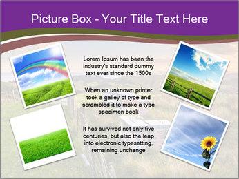Beekeeping PowerPoint Template - Slide 24