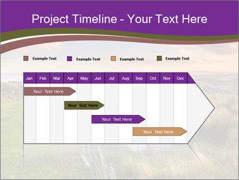 Beekeeping PowerPoint Template - Slide 25