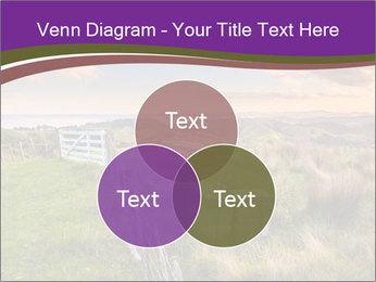 Beekeeping PowerPoint Template - Slide 33