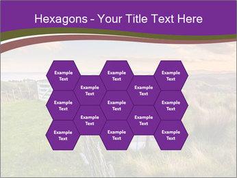 Beekeeping PowerPoint Template - Slide 44