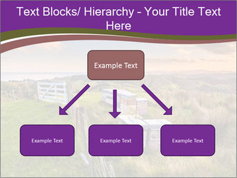 Beekeeping PowerPoint Template - Slide 69