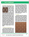 0000089508 Word Template - Page 3