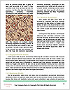 0000089508 Word Template - Page 4