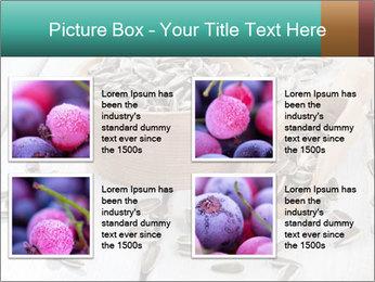 Organic Sunflower Seeds PowerPoint Template - Slide 14