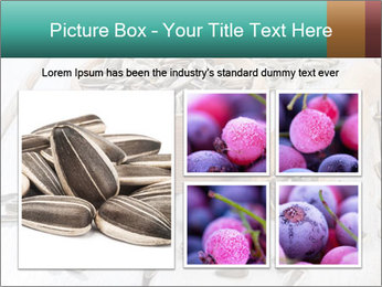 Organic Sunflower Seeds PowerPoint Template - Slide 19