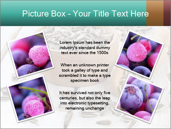 Organic Sunflower Seeds PowerPoint Template - Slide 24