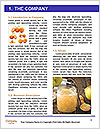 0000089524 Word Template - Page 3