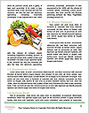 0000089529 Word Template - Page 4