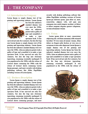 0000089532 Word Template - Page 3