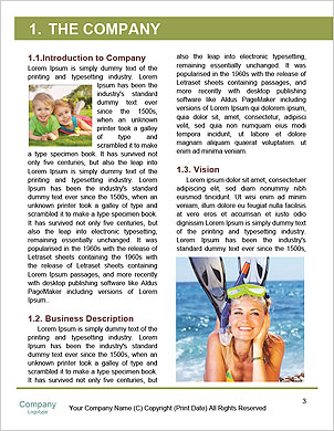 0000089533 Word Template - Page 3