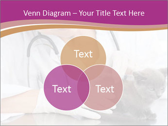 Woman Veterinarian With Kitten PowerPoint Template - Slide 33
