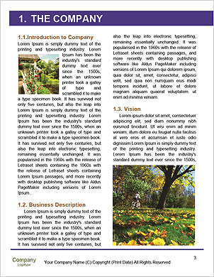 0000089539 Word Template - Page 3