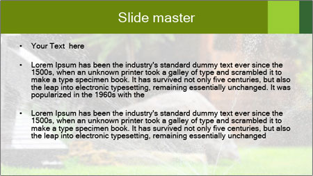 Yard Water System PowerPoint Template - Slide 2