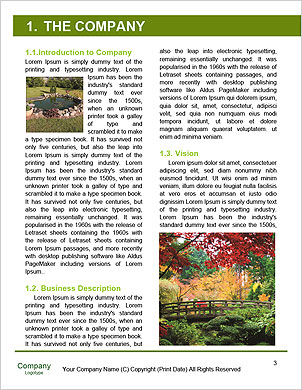 0000089541 Word Template - Page 3