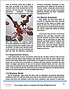 0000089564 Word Template - Page 4