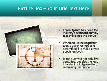 Retro Camera PowerPoint Template - Slide 20