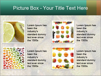 Thai Fruits PowerPoint Template - Slide 14