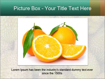 Thai Fruits PowerPoint Template - Slide 16