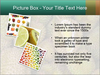 Thai Fruits PowerPoint Template - Slide 17