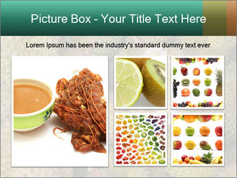 Thai Fruits PowerPoint Template - Slide 19