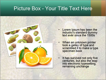 Thai Fruits PowerPoint Template - Slide 20