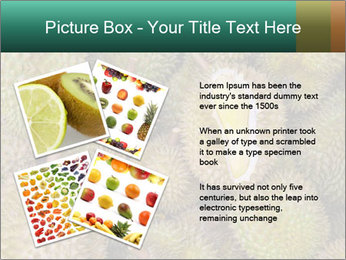Thai Fruits PowerPoint Template - Slide 23