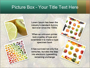Thai Fruits PowerPoint Template - Slide 24