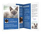 0000089578 Brochure Templates