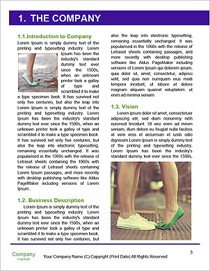 0000089581 Word Template - Page 3