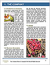 0000089588 Word Template - Page 3
