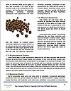 0000089588 Word Template - Page 4