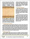 0000089591 Word Template - Page 4