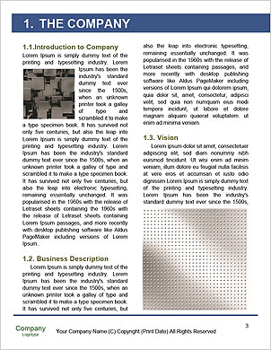 0000089596 Word Template - Page 3