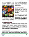 0000089607 Word Template - Page 4