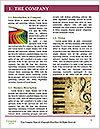 0000089608 Word Template - Page 3