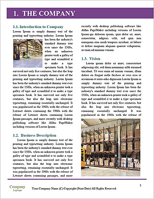0000089612 Word Template - Page 3