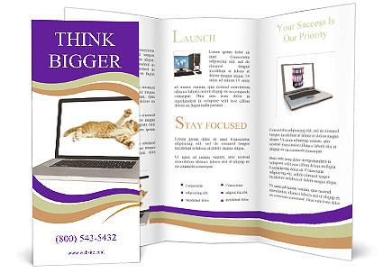 0000089619 Brochure Template