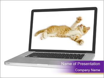 Cat Laptop Wallpaper PowerPoint Template - Slide 1