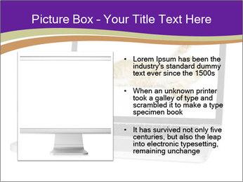 Cat Laptop Wallpaper PowerPoint Template - Slide 13
