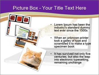 Cat Laptop Wallpaper PowerPoint Template - Slide 17