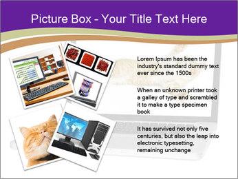Cat Laptop Wallpaper PowerPoint Template - Slide 23