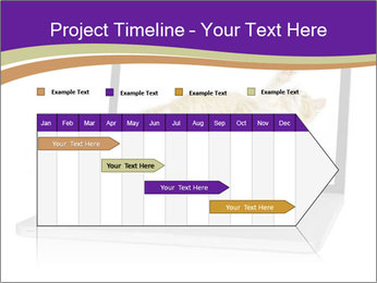 Cat Laptop Wallpaper PowerPoint Template - Slide 25