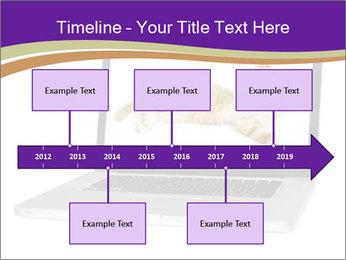 Cat Laptop Wallpaper PowerPoint Template - Slide 28