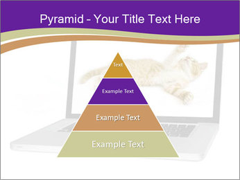 Cat Laptop Wallpaper PowerPoint Template - Slide 30