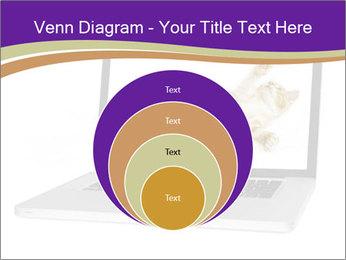 Cat Laptop Wallpaper PowerPoint Template - Slide 34