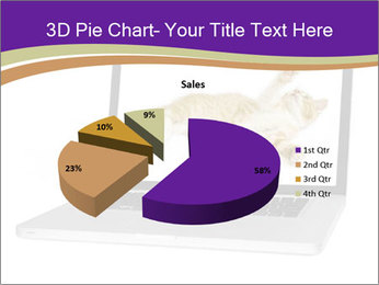 Cat Laptop Wallpaper PowerPoint Template - Slide 35