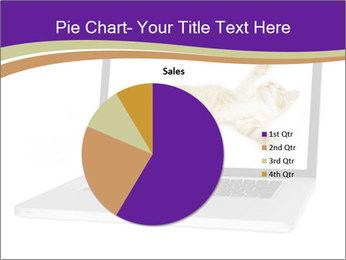 Cat Laptop Wallpaper PowerPoint Template - Slide 36
