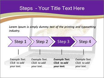 Cat Laptop Wallpaper PowerPoint Template - Slide 4