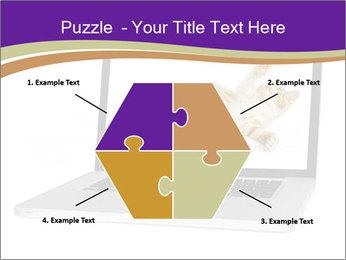 Cat Laptop Wallpaper PowerPoint Template - Slide 40